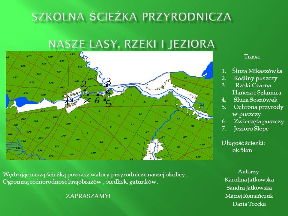 SZKOLNA ścieżka przyrodnicza NASZE LASY, RZEKI i JEZIORA