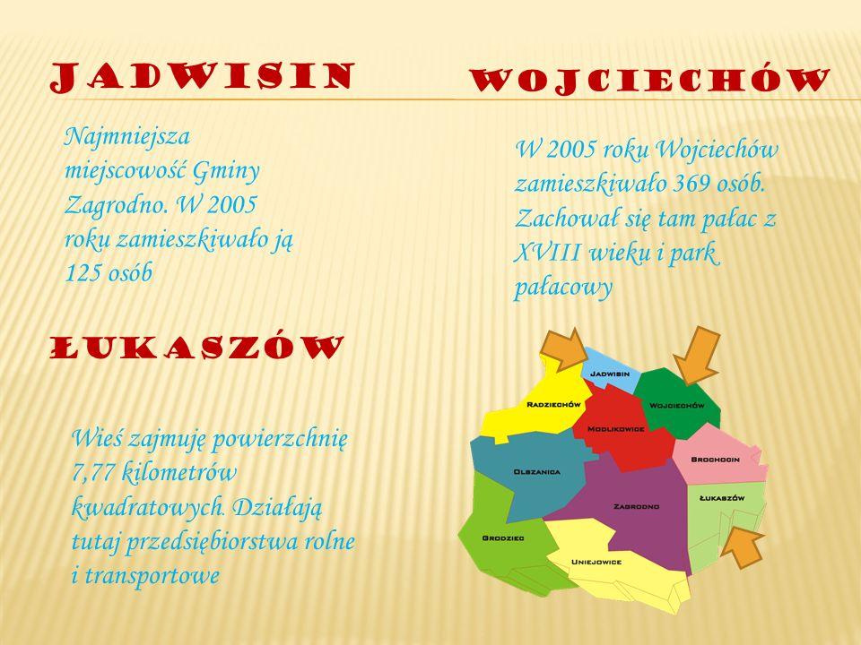 Jadwisin Wojciechów. Najmniejsza miejscowość Gminy Zagrodno. W 2005 roku zamieszkiwało ją 125 osób.