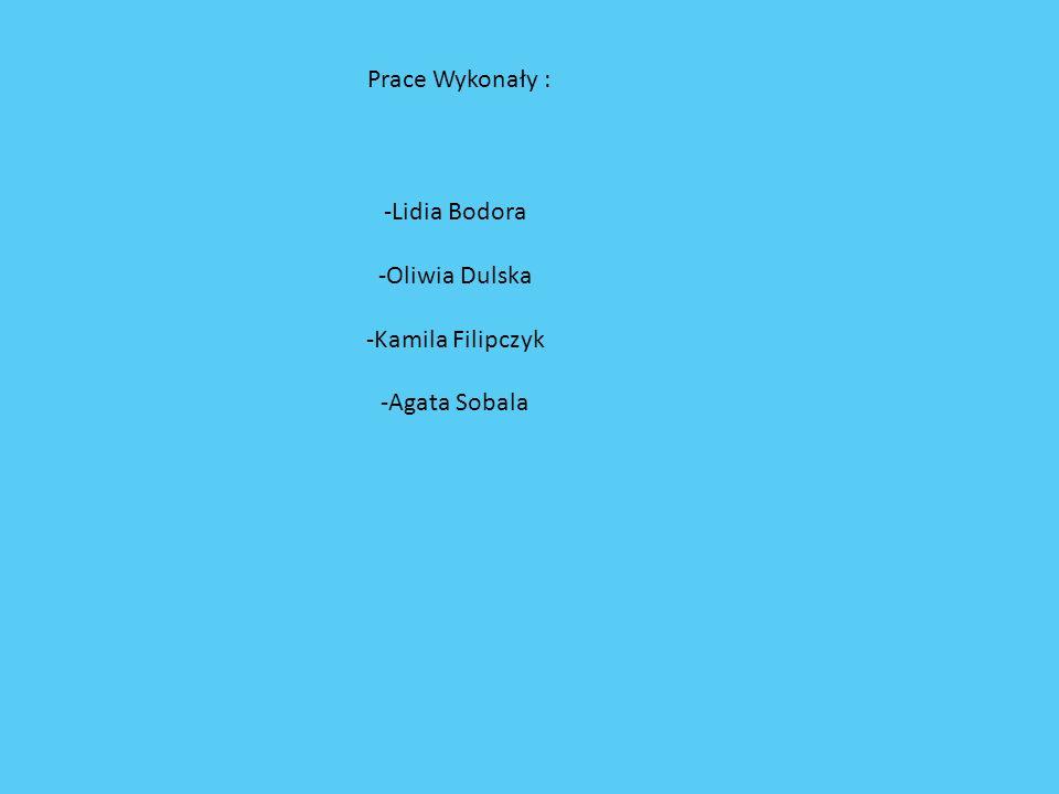 Prace Wykonały : -Lidia Bodora -Oliwia Dulska -Kamila Filipczyk -Agata Sobala