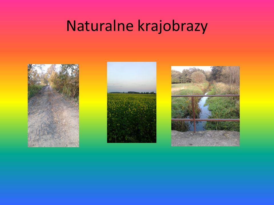 Naturalne krajobrazy