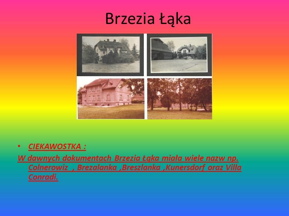 Brzezia Łąka CIEKAWOSTKA :