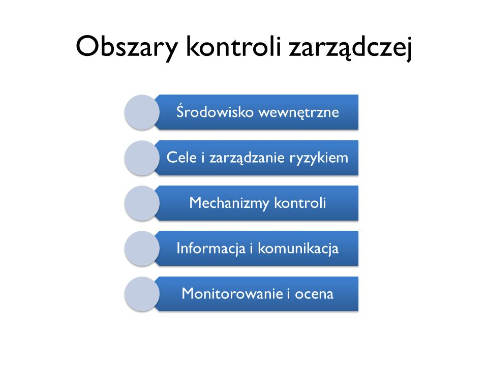 Obszary kontroli zarządczej