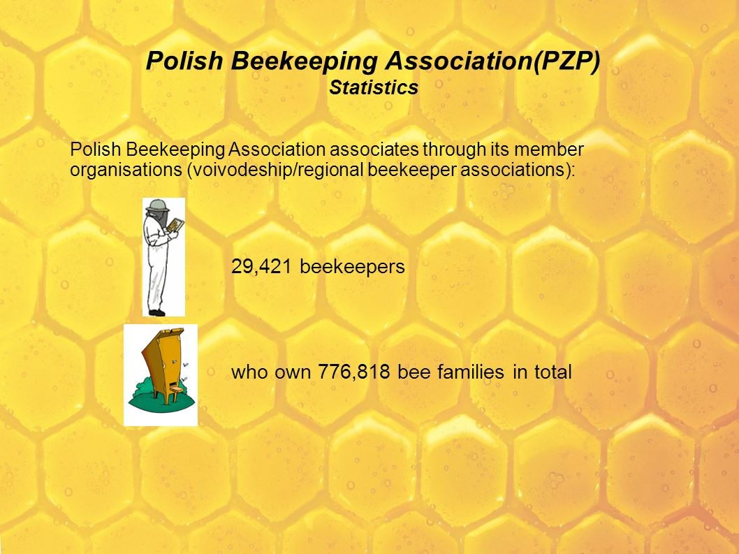 Polish Beekeeping Association(PZP) Statistics