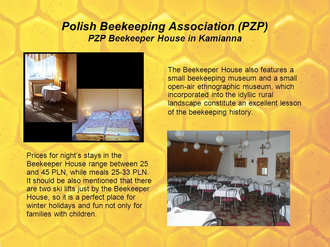 Polish Beekeeping Association (PZP) PZP Beekeeper House in Kamianna