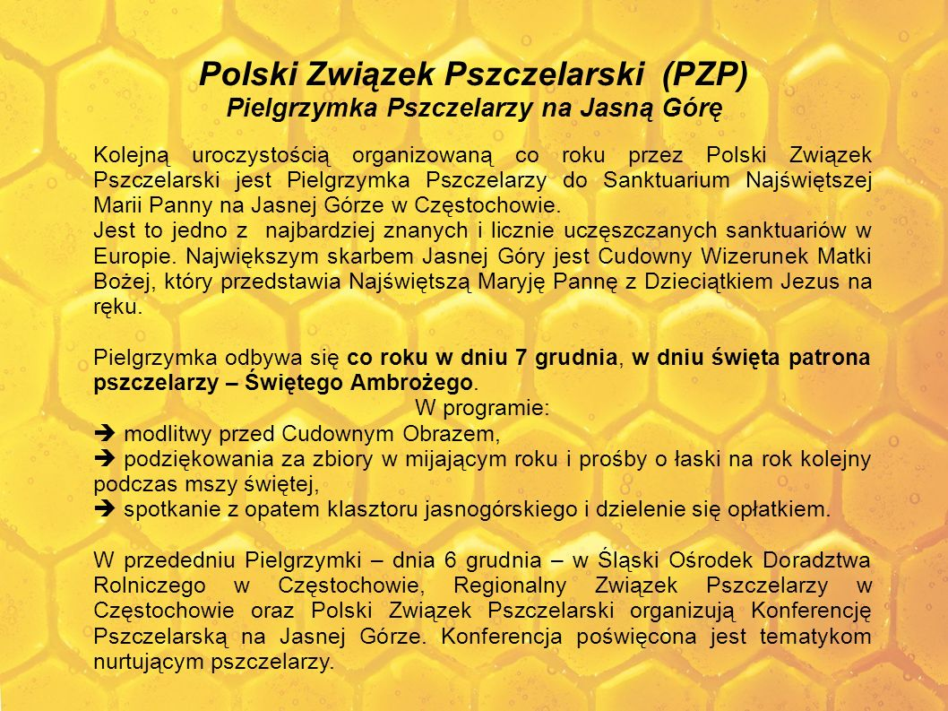 Polski Związek Pszczelarski (PZP) Pielgrzymka Pszczelarzy na Jasną Górę