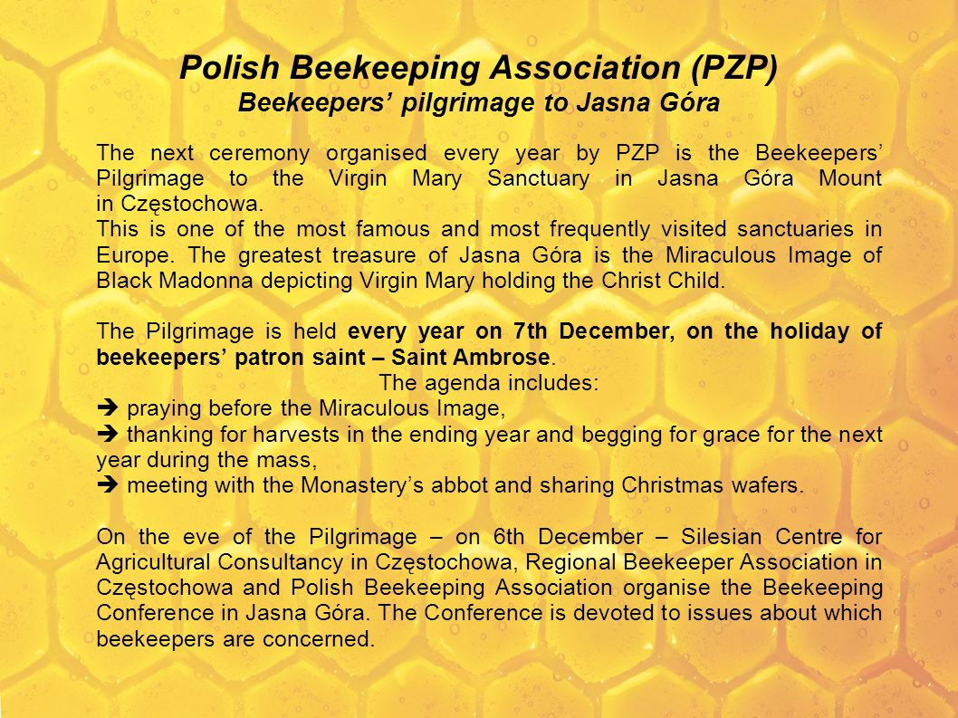 Polish Beekeeping Association (PZP) Beekeepers' pilgrimage to Jasna Góra