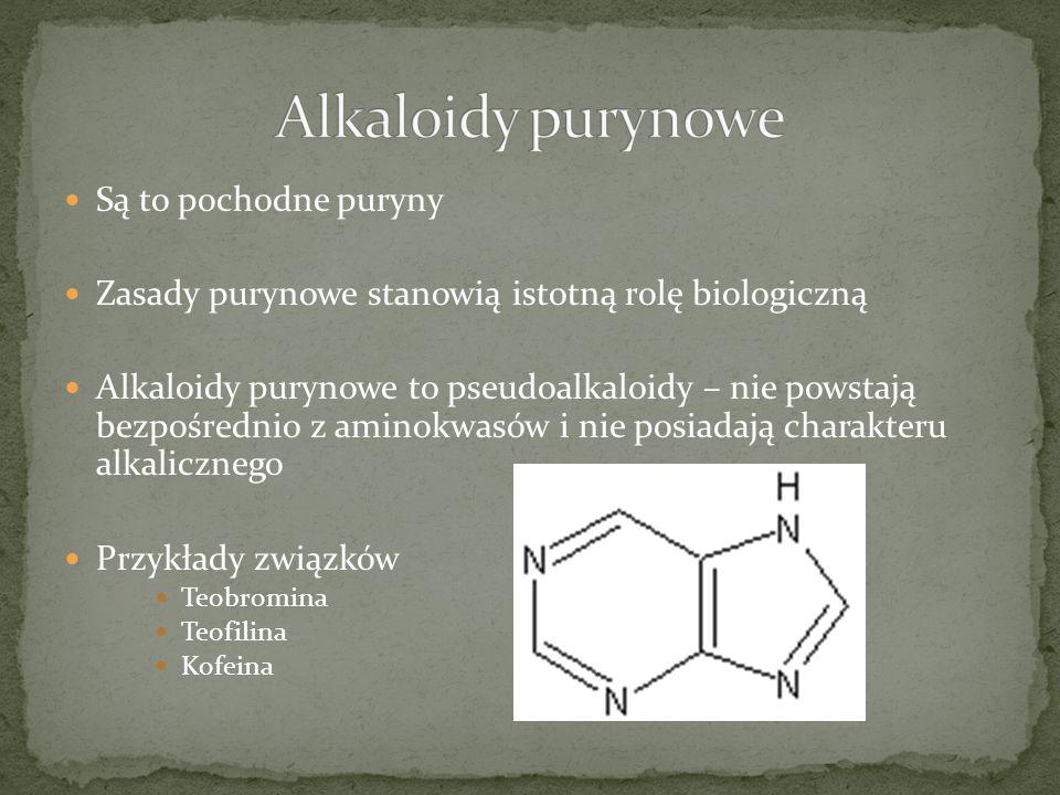 Alkaloidy purynowe Są to pochodne puryny