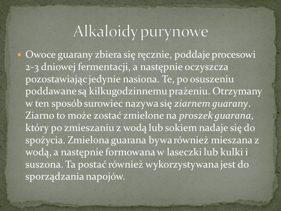 Alkaloidy purynowe