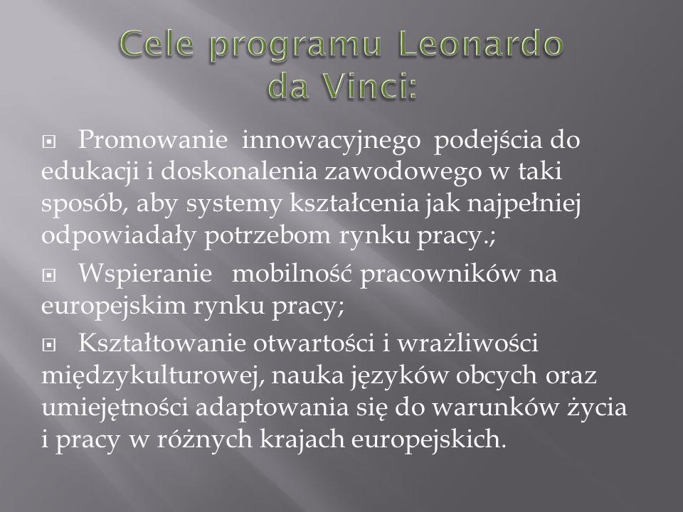 Cele programu Leonardo da Vinci: