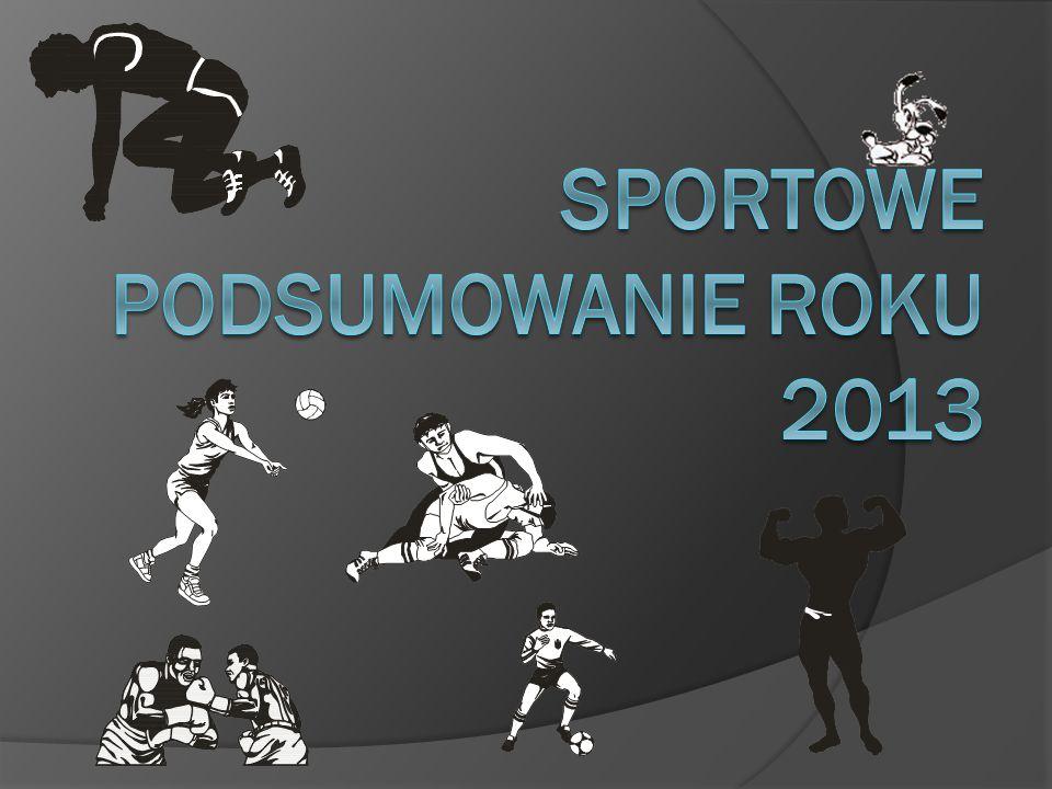 Sportowe podsumowanie roku 2013