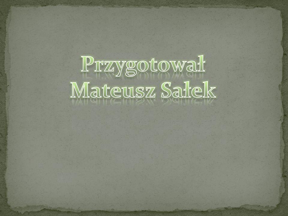 Przygotował Mateusz Sałek