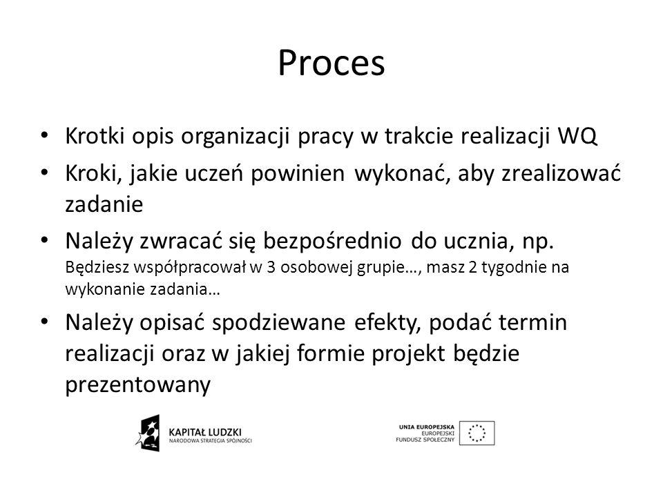 Proces Krotki opis organizacji pracy w trakcie realizacji WQ