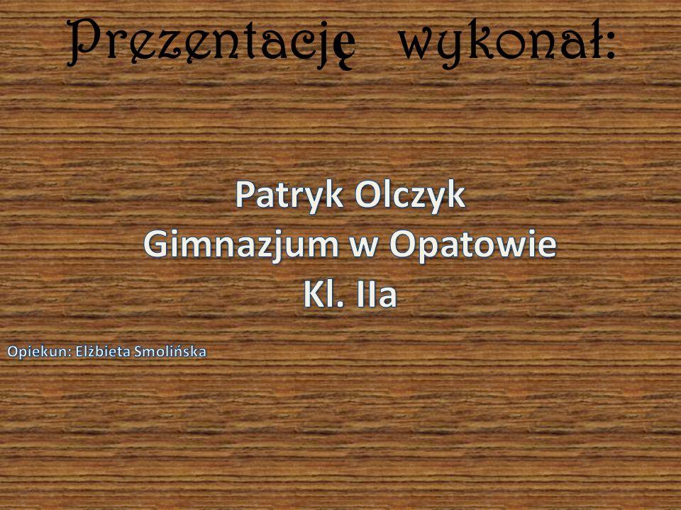 Prezentację wykonał: Patryk Olczyk Gimnazjum w Opatowie Kl. IIa