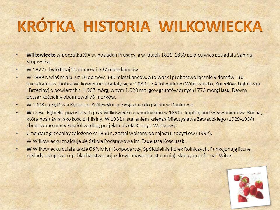 KRÓTKA HISTORIA WILKOWIECKA