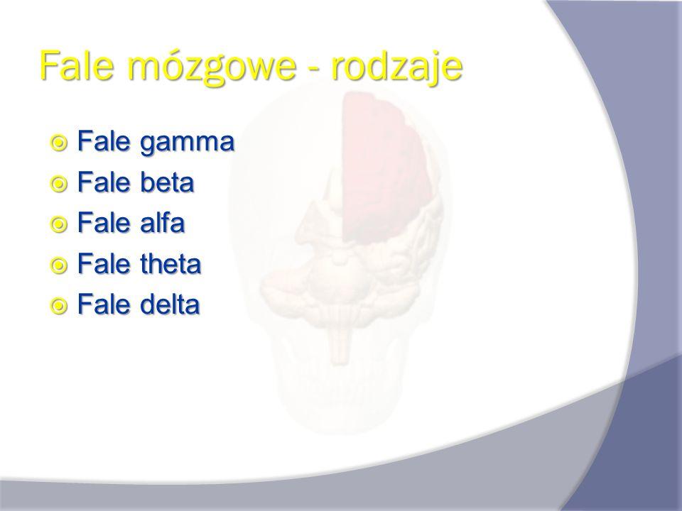 Fale mózgowe - rodzaje Fale gamma Fale beta Fale alfa Fale theta