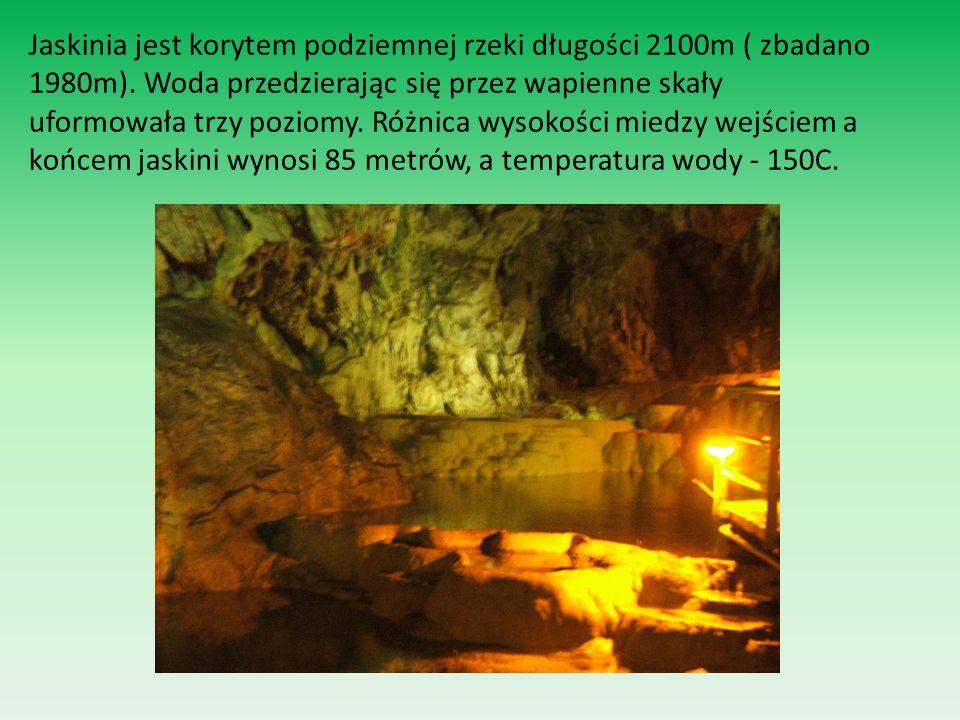 Jaskinia jest korytem podziemnej rzeki długości 2100m ( zbadano 1980m)