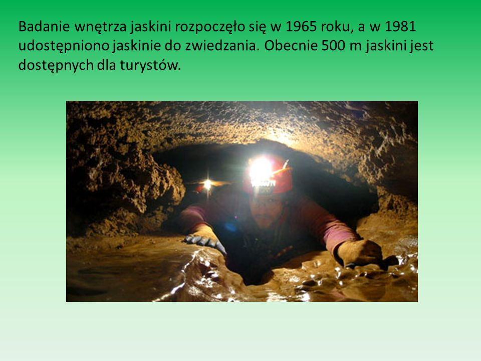 Badanie wnętrza jaskini rozpoczęło się w 1965 roku, a w 1981 udostępniono jaskinie do zwiedzania.