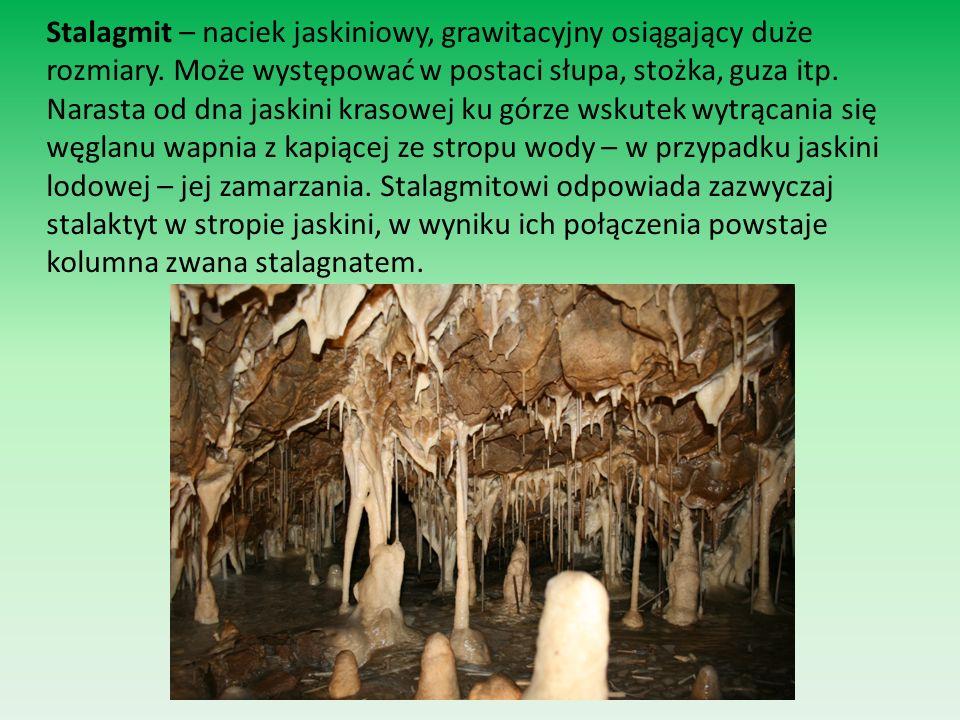 Stalagmit – naciek jaskiniowy, grawitacyjny osiągający duże rozmiary