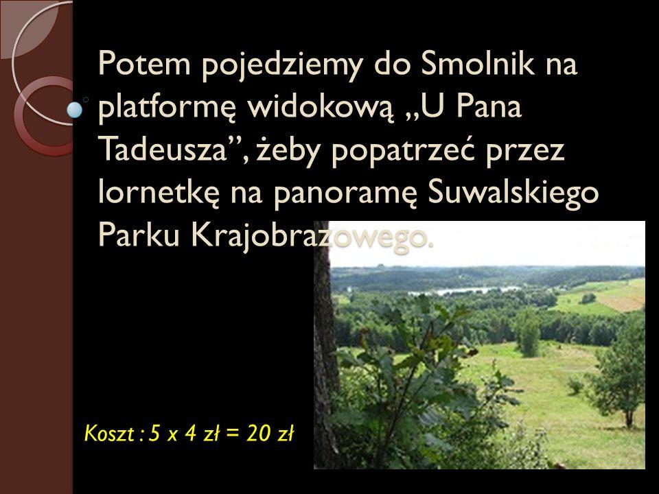 """Potem pojedziemy do Smolnik na platformę widokową """"U Pana Tadeusza , żeby popatrzeć przez lornetkę na panoramę Suwalskiego Parku Krajobrazowego."""