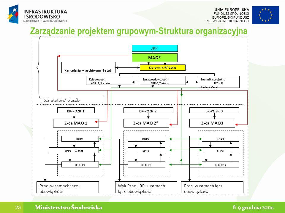 Zarządzanie projektem grupowym-Struktura organizacyjna