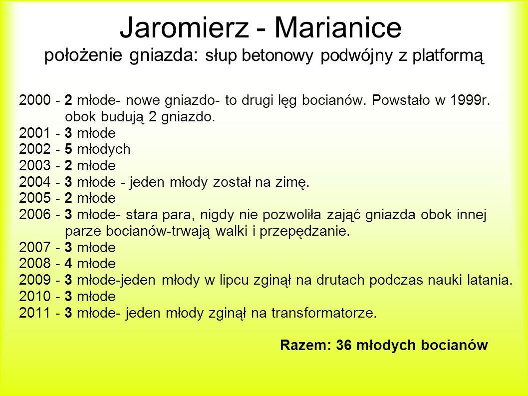 Jaromierz - Marianice położenie gniazda: słup betonowy podwójny z platformą