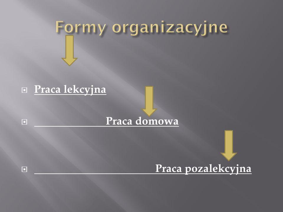 Formy organizacyjne Praca lekcyjna Praca domowa Praca pozalekcyjna