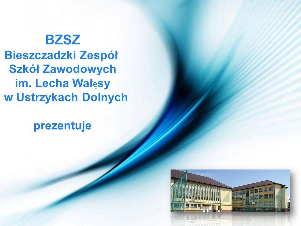 BZSZ Bieszczadzki Zespół Szkół Zawodowych im. Lecha Wałęsy
