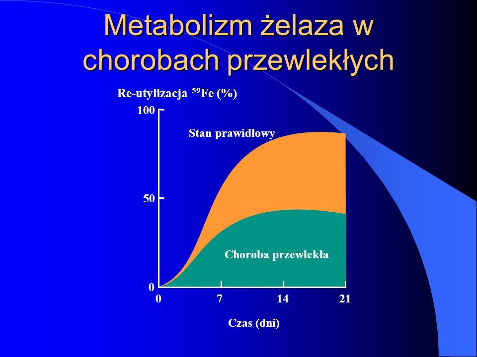 Metabolizm żelaza w chorobach przewlekłych