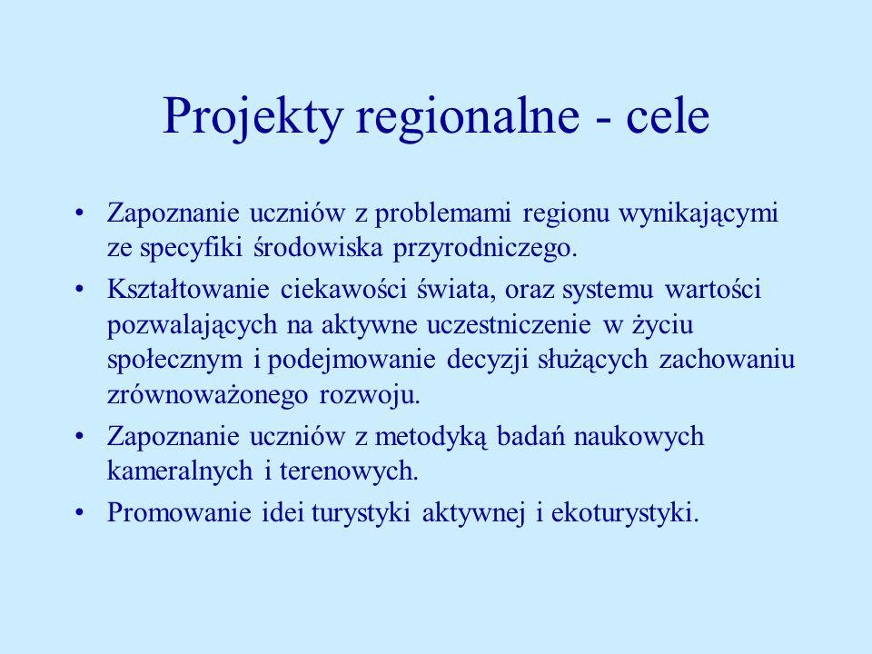 Projekty regionalne - cele