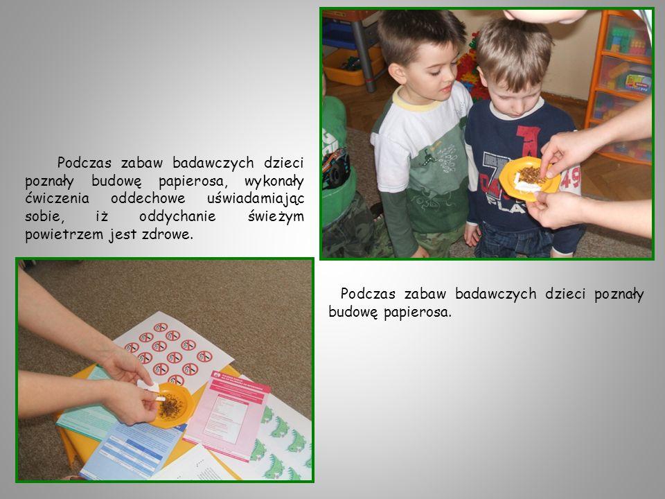 Podczas zabaw badawczych dzieci poznały budowę papierosa, wykonały ćwiczenia oddechowe uświadamiając sobie, iż oddychanie świeżym powietrzem jest zdrowe.