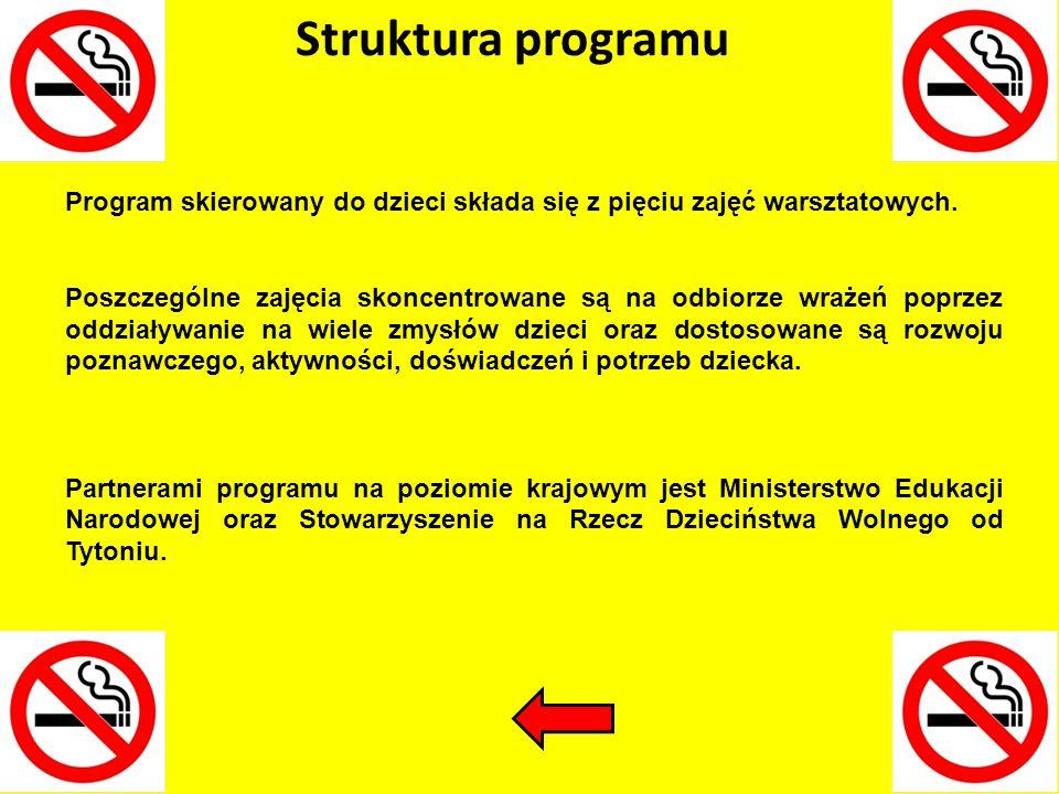 Struktura programu Program skierowany do dzieci składa się z pięciu zajęć warsztatowych.