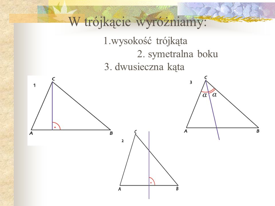 W trójkącie wyróżniamy: