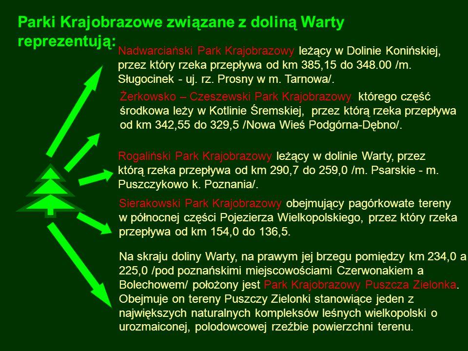 Parki Krajobrazowe związane z doliną Warty reprezentują: