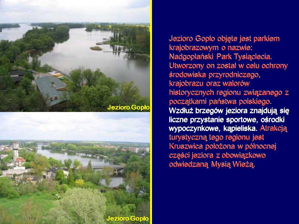Jezioro Gopło objęte jest parkiem krajobrazowym o nazwie: Nadgoplański Park Tysiąclecia. Utworzony on został w celu ochrony środowiska przyrodniczego, krajobrazu oraz walorów historycznych regionu związanego z początkami państwa polskiego. Wzdłuż brzegów jeziora znajdują się liczne przystanie sportowe, ośrodki wypoczynkowe, kąpieliska. Atrakcją turystyczną tego regionu jest Kruszwica położona w północnej części jeziora z obowiązkowo odwiedzaną Mysią Wieżą.