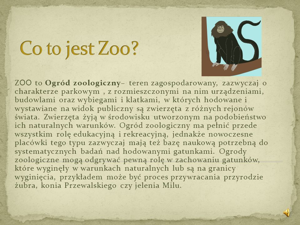 Co to jest Zoo