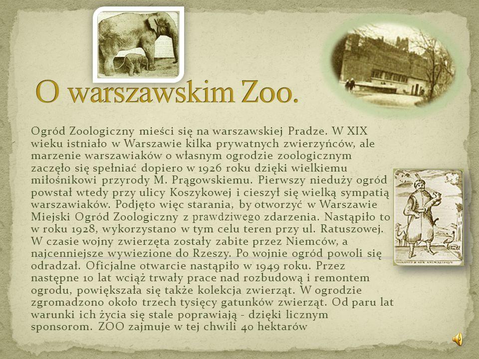 O warszawskim Zoo.