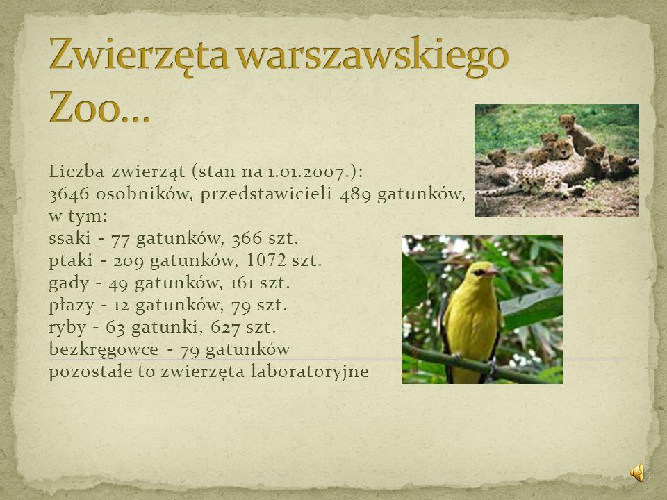 Zwierzęta warszawskiego Zoo…