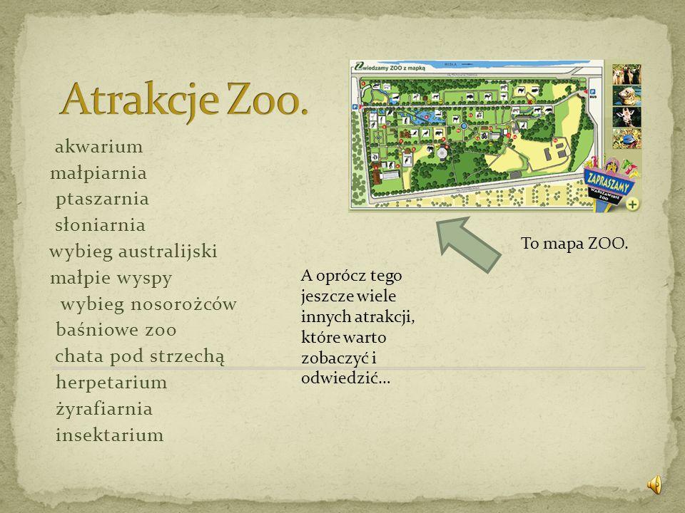 Atrakcje Zoo. akwarium małpiarnia ptaszarnia słoniarnia