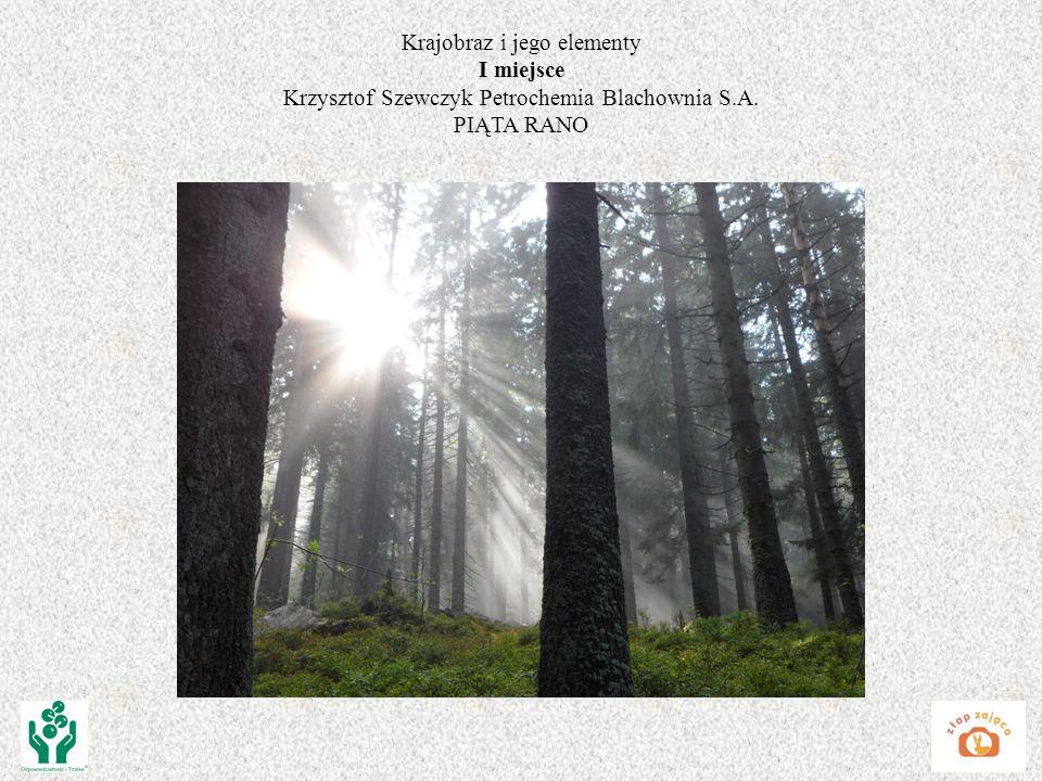 Krajobraz i jego elementy I miejsce Krzysztof Szewczyk Petrochemia Blachownia S.A. PIĄTA RANO