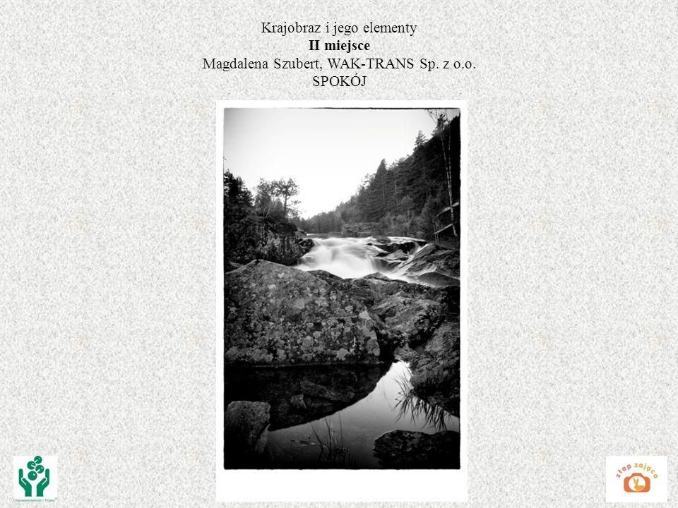 Krajobraz i jego elementy II miejsce Magdalena Szubert, WAK-TRANS Sp