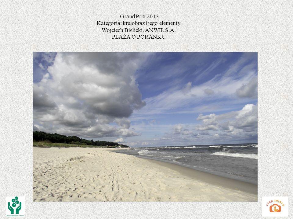Kategoria: krajobraz i jego elementy Wojciech Bielicki, ANWIL S.A.