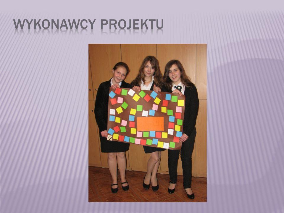 Wykonawcy projektu
