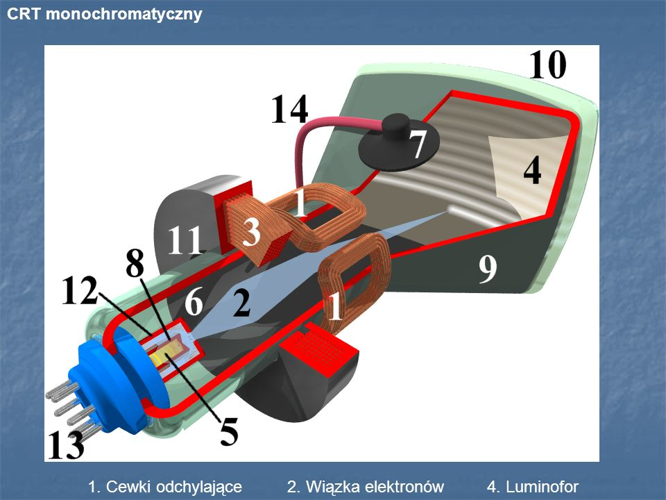 1. Cewki odchylające 2. Wiązka elektronów 4. Luminofor
