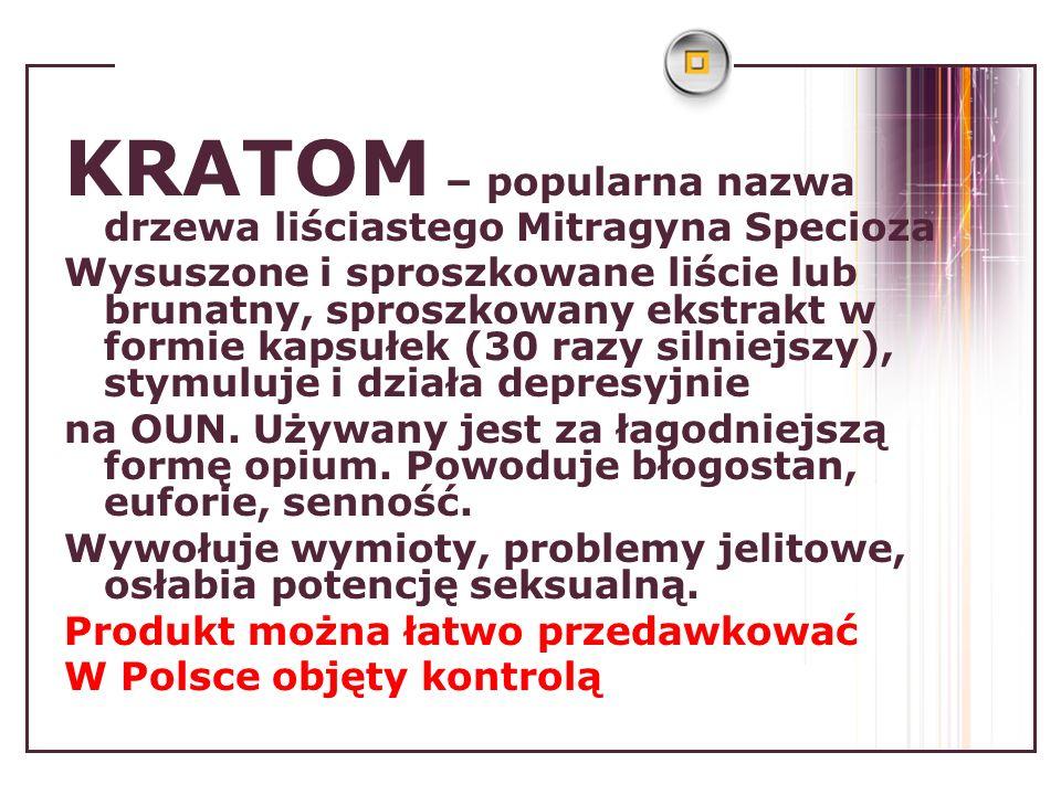 KRATOM – popularna nazwa drzewa liściastego Mitragyna Specioza