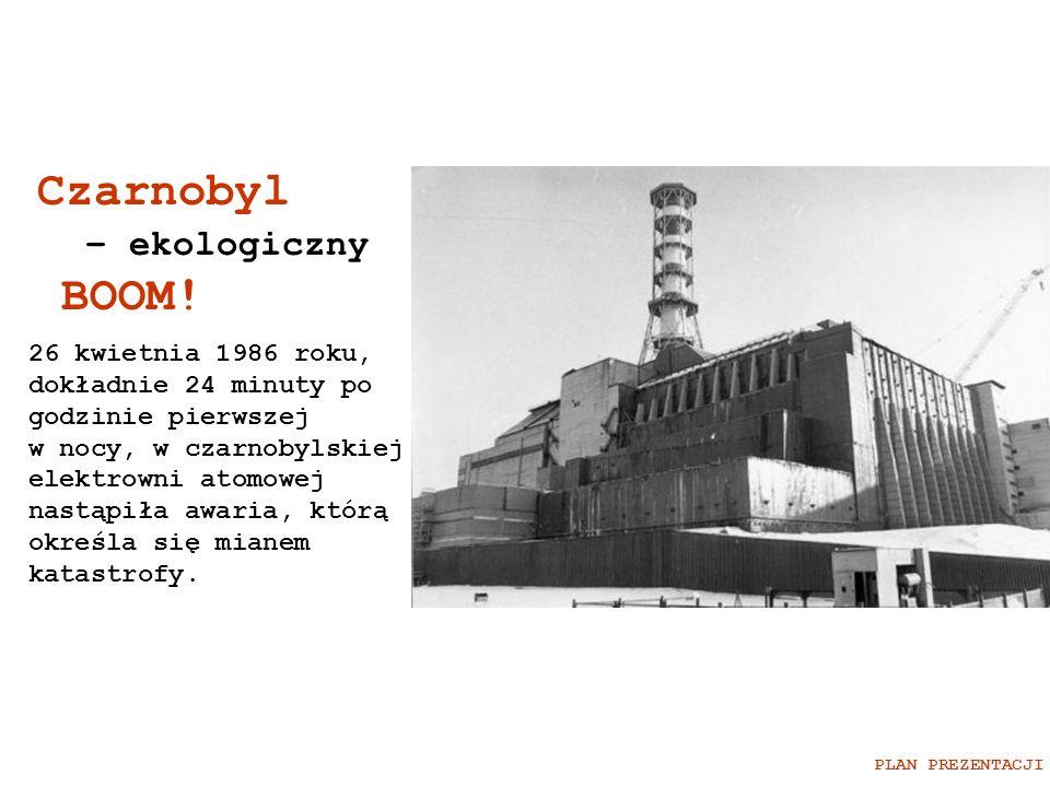 Czarnobyl – ekologiczny BOOM!