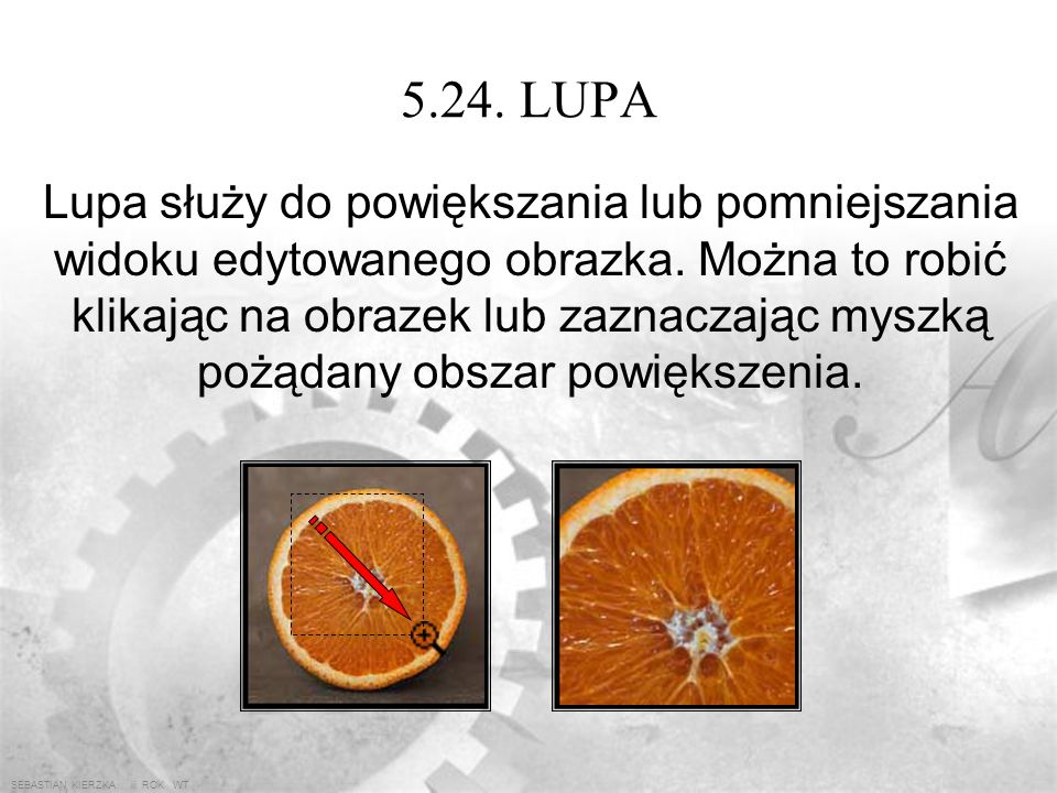 5.24. LUPA