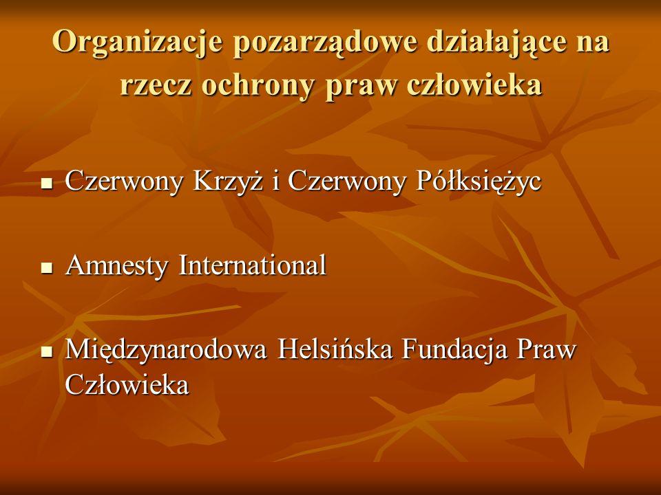 Organizacje pozarządowe działające na rzecz ochrony praw człowieka