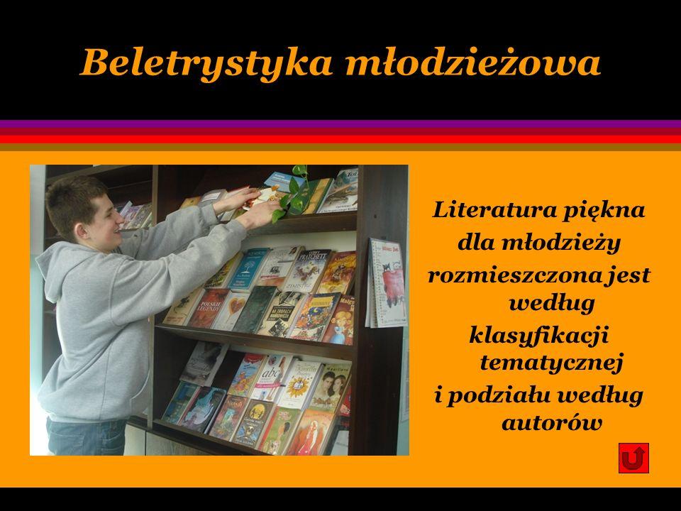 Beletrystyka młodzieżowa