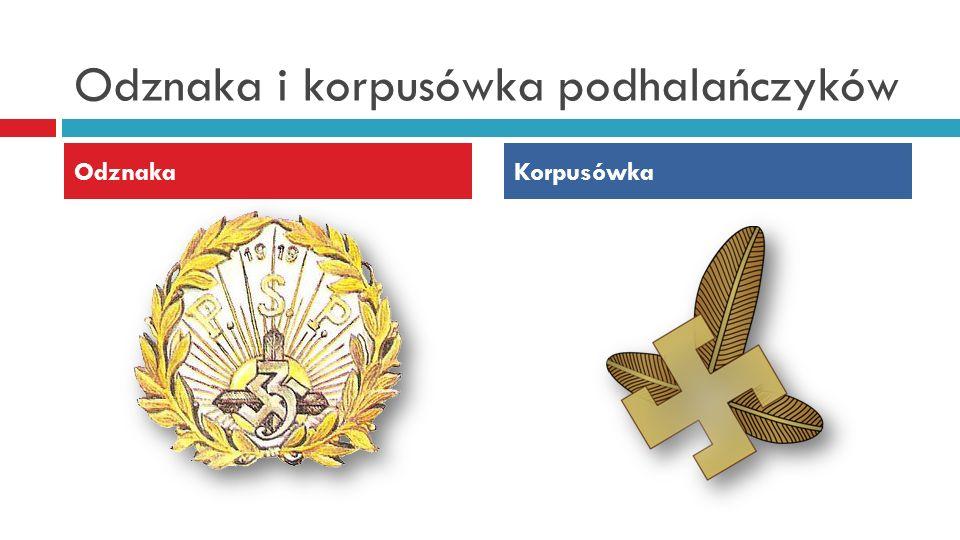 Odznaka i korpusówka podhalańczyków
