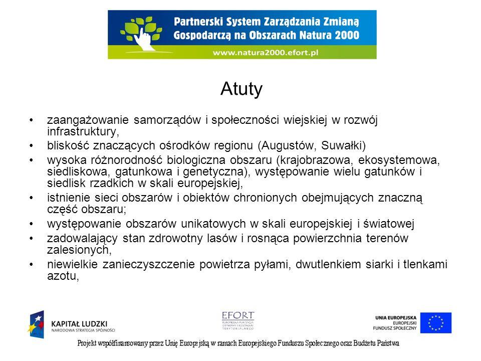 Atuty zaangażowanie samorządów i społeczności wiejskiej w rozwój infrastruktury, bliskość znaczących ośrodków regionu (Augustów, Suwałki)